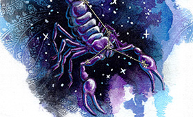 Scorpio the Scorpion- Constellation Series