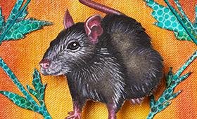 Protection- Aries, Rat, Mint, Moths & Snails