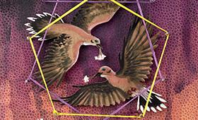 Partnership- Libra, Doves & Yarrow