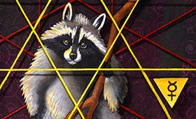 Adaptability- Gemini, Raccoons & Walnut