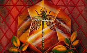 Longevity- Sagittarius, Dragonfly & Sage