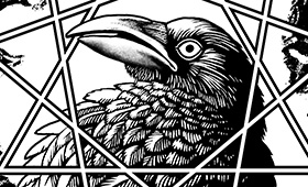 Crow T-shirt Design